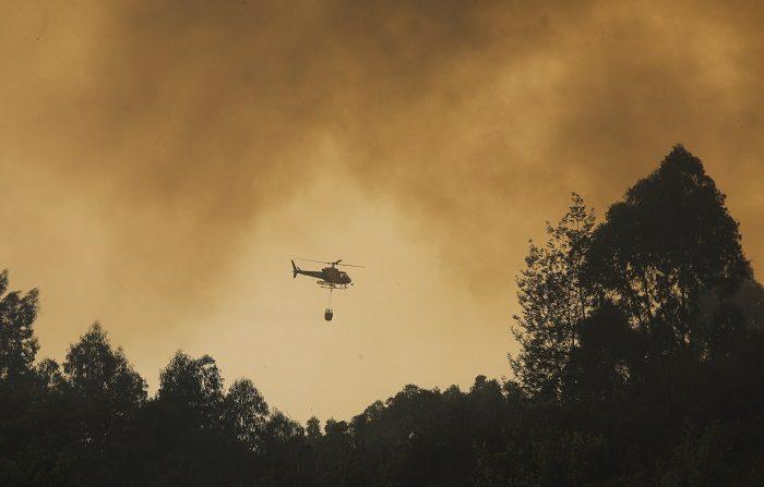 Bomberos tratan de extinguir las llamas del incendio declarado en el área de Monchique en el Algarve portugués hoy, 7 de agosto de 2018. El incendio forestal que se declaró hace cuatro días en la región lusa de El Algarve, al sur del país, sigue descontrolado y más de un millar de bomberos con numeroso apoyo aéreo continúa en las labores de extinción para intentar atajarlo. EFE/ Miguel A. Lopes