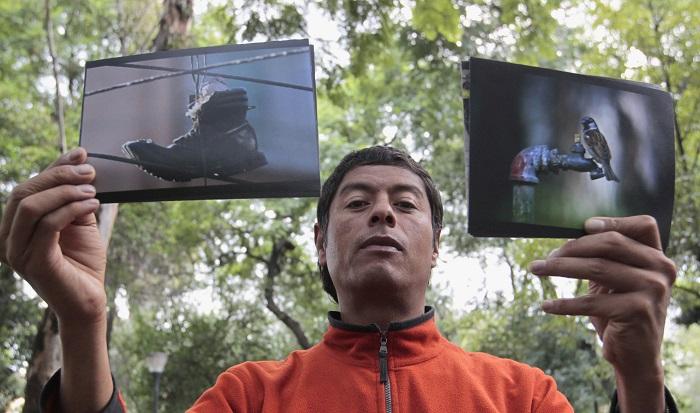 Una tortolita viviendo en un zapato o un nido hecho de cabello son algunas de las imágenes tomadas por el fotoperiodista Pablo Salazar en la Ciudad de México, como parte de un proyecto que muestra el espíritu de supervivencia de los pájaros en esta megaurbe. EFE/Mario Guzmán