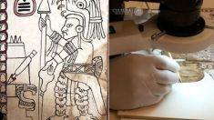 Reconocen al Códice Maya de México como el manuscrito auténtico más antiguo de América