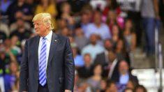 """Trump elogia a nuevo presidente de México: """"Me agrada su nuevo líder. Creo que podría ser estupendo"""""""