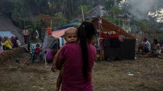 Crisis humanitaria por terremoto de Indonesia: miles niños en las calles sin agua ni alimentos