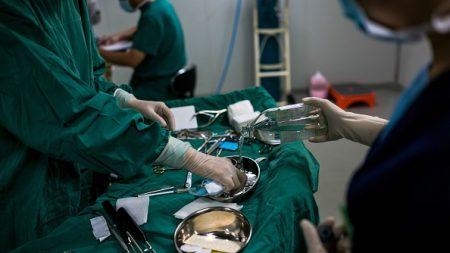 Investigan a académico australiano por falta de ética profesional en relación a sus dichos sobre la sustracción de órganos en China