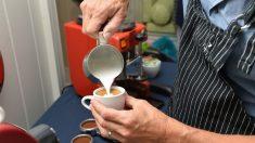 Abuso de café puede aumentar presión arterial y alterar el sistema nervioso