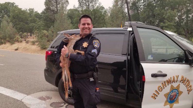 (Crédito: California Highway Patrol)