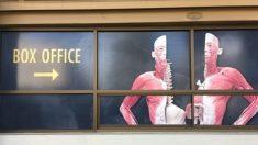 Crítico de la exhibición de cadáveres humanos quiere ser pionero en pruebas sobre tejido plastinado