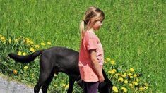 Con solo 11 años esta niña ayuda a dos extraños después de un traumático accidente