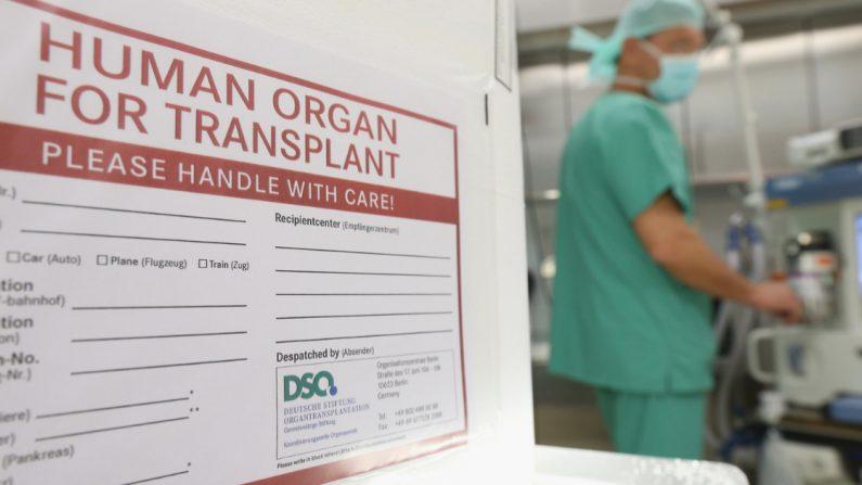 Matar para vivir: el documental que expone el lado oscuro del comercio de trasplantes en China