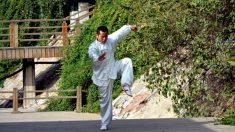 Maestro de artes marciales cae por enfermedad y encuentra un camino inesperado de regreso a la salud
