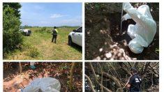 Identificación de restos, reto en hallazgo de masiva fosa ilegal en México