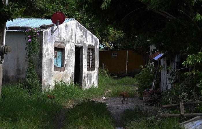 Fotografía fechada el 9 de septiembre de 2018 que muestra la zona donde peritos y forenses trabajan en la comunidad de Arbolillo, en el estado de Veracruz (México), donde se ha hallado la segunda fosa clandestina más grande de esta región del este de México, en la que el número de cráneos encontrados ha pasado de 166 a 174, según un informe oficial de la Fiscalía estatal. EFE