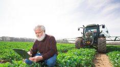 El IICA destaca coincidencias con México para fortalecer la agricultura