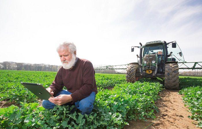 El Instituto Interamericano de Cooperación para la Agricultura (IICA) destacó hoy las coincidencias y el apoyo de México para fortalecer el sector agrícola y el desarrollo rural. EFE