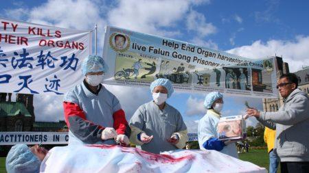 Mujer china muere repentinamente bajo custodia, informe advierte sobre 'órganos extraídos'
