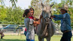 Asilo de ancianos recibe la visita inesperada de un caballo y la felicidad de estos abuelos es total