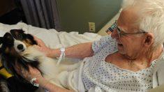 Abuelo canta alabanzas a Dios hasta su último aliento con tanta devoción que ya inspiró a miles