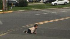 Con horror conductor frena el auto ante una bebé gateando sola en medio del tráfico de una carretera