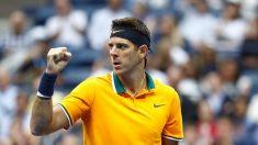 Argentino Del Potro jugará la final, Nadal abandonó el Abierto de tenis de EE.UU.