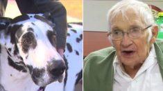 Este perro salva la vida de un hombre de 89 años que casi muere congelado