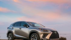 Lexus NX 300: A la caza del joven profesional
