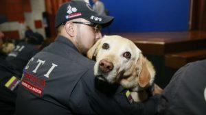 Emotiva ceremonia de jubilación para 14 perros policía de Colombia