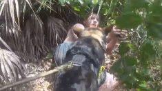 Buen chico: Perro policía atrapa un hombre que intentó secuestrar a un niño en Florida