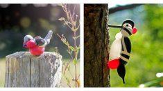 Artista captura la magia de las aves en su hábitat natural con sus increíbles esculturas en globos