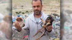 Este hombre renuncia a su profesión por amor a los animales y lleva salvando 500 perros