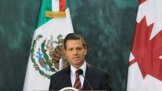 Inhabilitan por 10 años a funcionario de administración del expresidente mexicano Peña Nieto