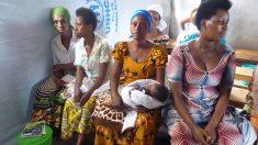 La FAO abordará medidas para acabar con el hambre en el Día de Alimentación