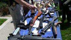 Desmantelan pandilla en California y decomisan 13 fusiles de asalto