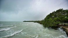 La tormenta tropical Vicente se forma en el pacífico sur de México