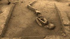 Perú: desentierran esqueleto completo preincaico de 3000 años en el Cusco