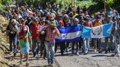 Pentágono identifica a 7000 tropas para desplegar en la frontera con México