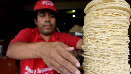 Denuncian en México que harina de tortilla tiene glifosato cancerígeno de Monsanto