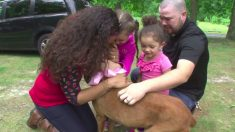 Esta familia cae de rodillas cuando se entera que su perro robado hace 2 años está con vida
