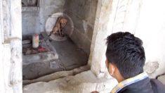 """Perrito malherido se refugia en un antiguo templo y sus """"rezos"""" llegan a oídos de sus rescatistas"""