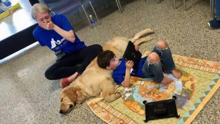Mamá llora de emoción cuando ve la reacción de su hijo autista con su perro de servicio
