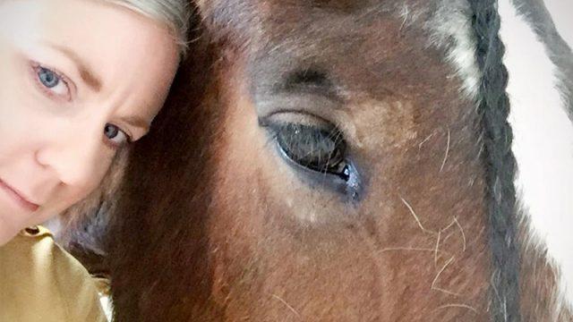 Con su sola mirada, una yegua rescatada evitó que una mujer se suicidara