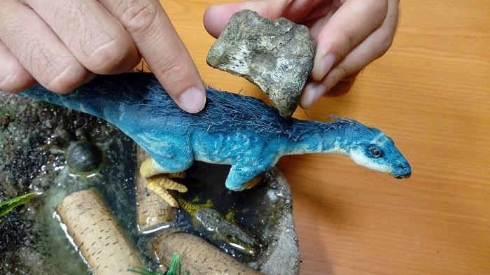 Paleontólogos del Museo del Desierto (Mude) han descubierto en México una familia de dinosaurios de la que hasta ahora no había pistas en el país, y que habitó en el estado de Coahuila hace 70 millones de años, ha informado hoy el Consejo Nacional de Ciencia y Tecnología (Conacyt). EFE/Conacyt