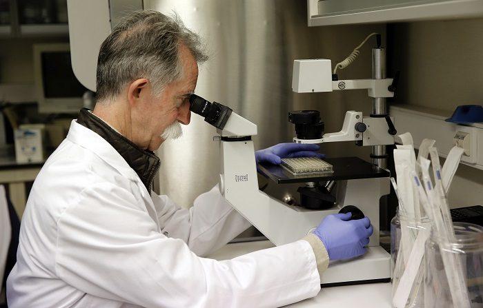 Científicos mexicanos elaboran bebida de haba que baja colesterol y glucosa EFE/Juan Carlos Cárdenas