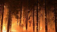 Bomberos esperan controlar el enorme incendio de California a finales de mes