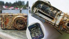 A 2 años de naufragar alguien encuentra su cámara hundida en el mar ¡y las fotos están intactas!
