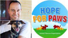 Dan todo su corazón para rescatar perros abandonados y con su botón