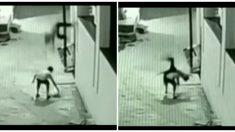 Filman niño que cae 12 metros y se salva milagrosamente aterrizando sobre su amigo