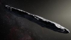 Harvard cree que el asteroide Oumuamua podría ser una nave extraterrestre