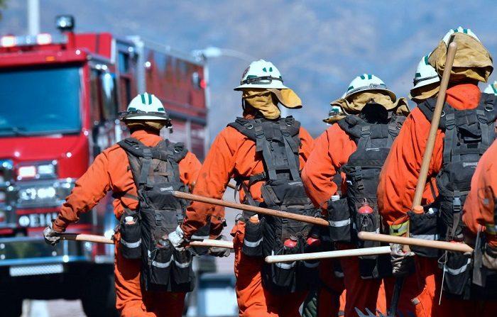 Los Bomberos Voluntarios de Reclusos de California que trabajaron en grupo en West Hills, California. Autoridades dan por controlado incendio, además del descubrimiento esta mañana de dos nuevos cadáveres, por lo que ya asciende a 85 el número de víctimas mortales (Foto de Frederic J. BROWN / AFP) (El crédito de la foto debe leer FREDERIC J. BROWN/AFP/Getty Images)