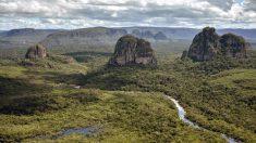 Los Tsimané viven en el amazonas y nunca se enferman del corazón, ésta es su dieta modelo
