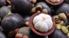 Estas son las 7 frutas exóticas más deliciosas y curativas que no puedes dejar de probar