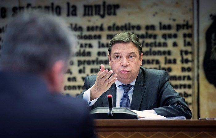 El ministro de Agricultura, Pesca y Alimentación, Luis Planas , comparece en la comisión de Agricultura, Pesca y Alimentación, esta mañana en el Senado. EFE/Luca Piergiovanni