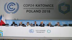 Reducir emisiones puede salvar un millón de vidas cada año, según la OMS